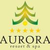 aurora logo23